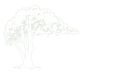 Bonifant Tree Service