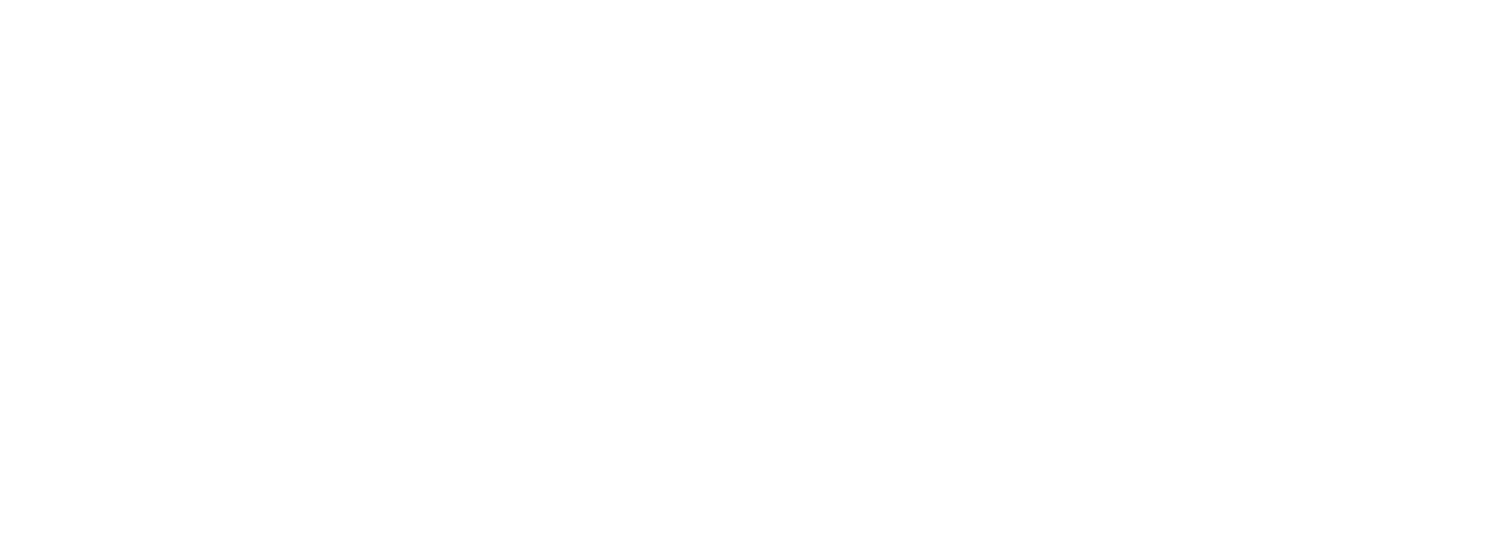 Ronin Dispute Resolution Services