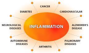 Inflammatory diagram