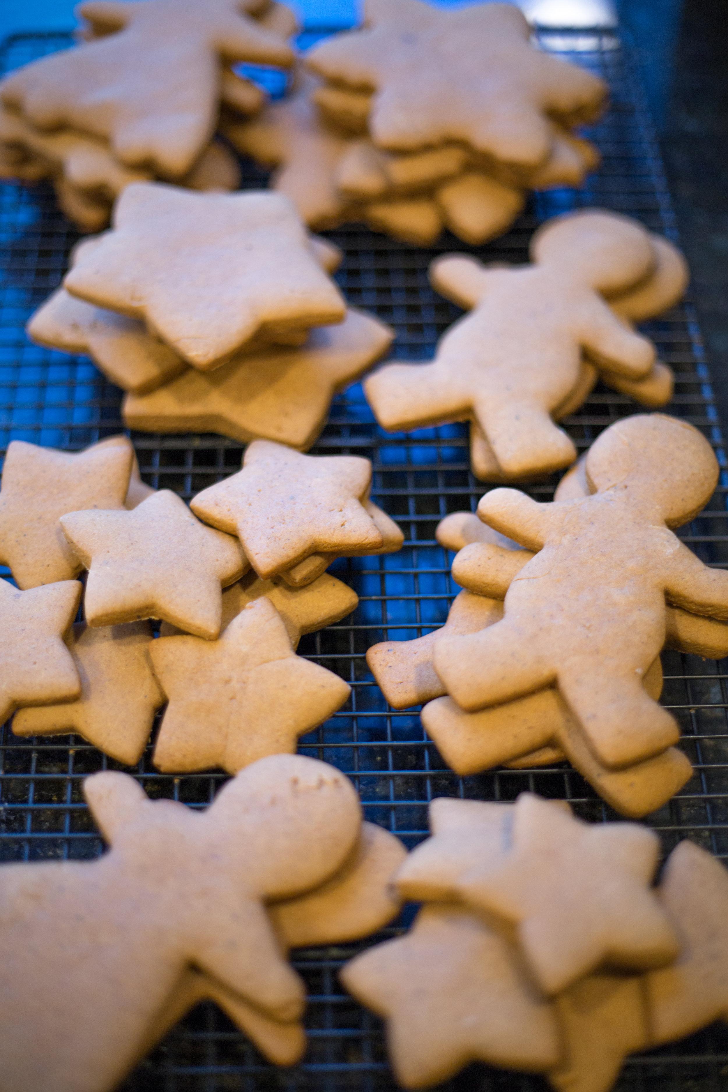 Spicy Gingerbread Cookies | Soymilk + Honey