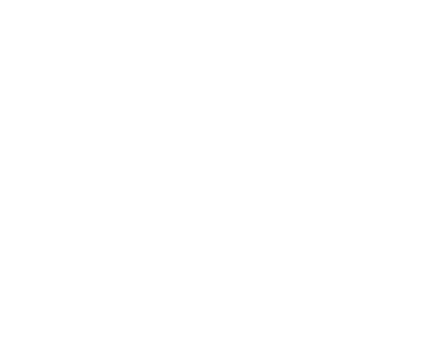 Disco Fries