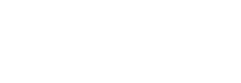 Princess Party Palace