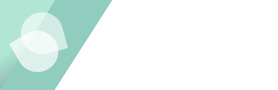 The Voice Stylist