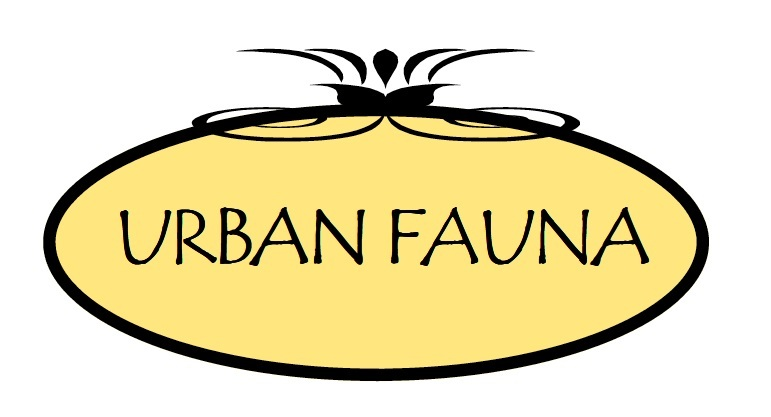 Urban Fauna | Doggie Daycare, Pet Supplies, Grooming  | Portland, OR