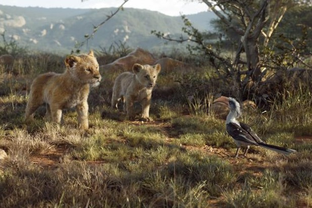The Lion King Blog Go Watch A Movie
