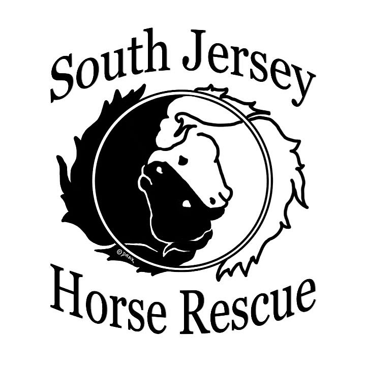 South Jersey Horse Rescue