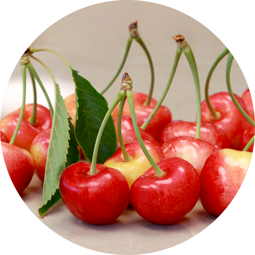 CMI Teams Up with Stemilt to Bring Skylar Rae® Cherries to