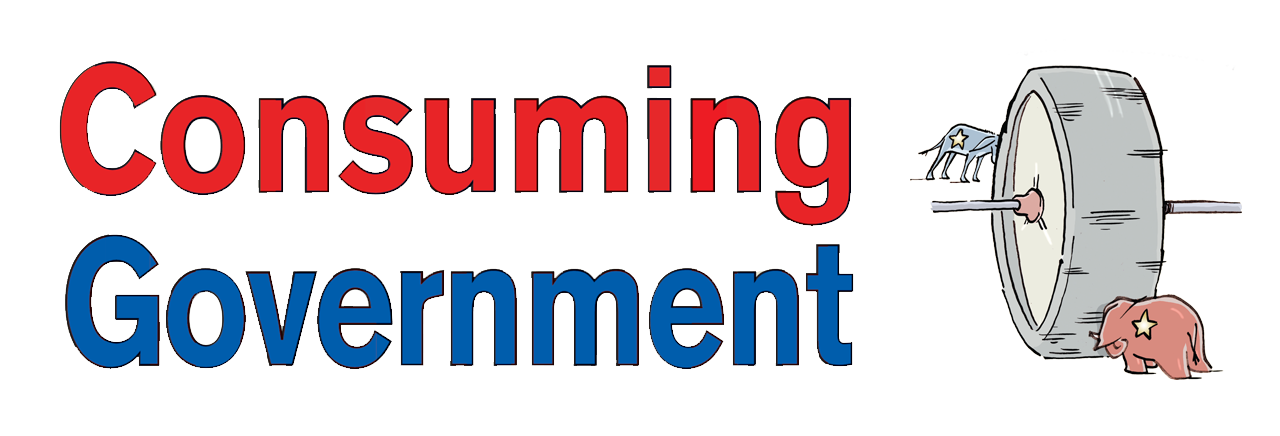 Consuming Government
