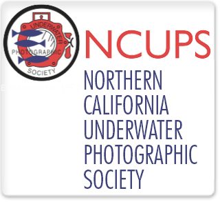 NCUPS
