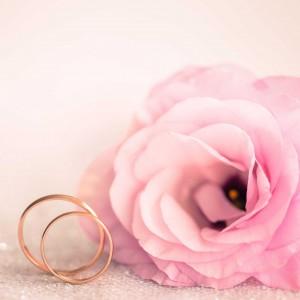 Rose_Wedding_rings_cover