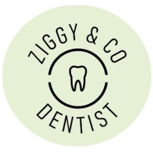 Ziggy and Co - Dentist