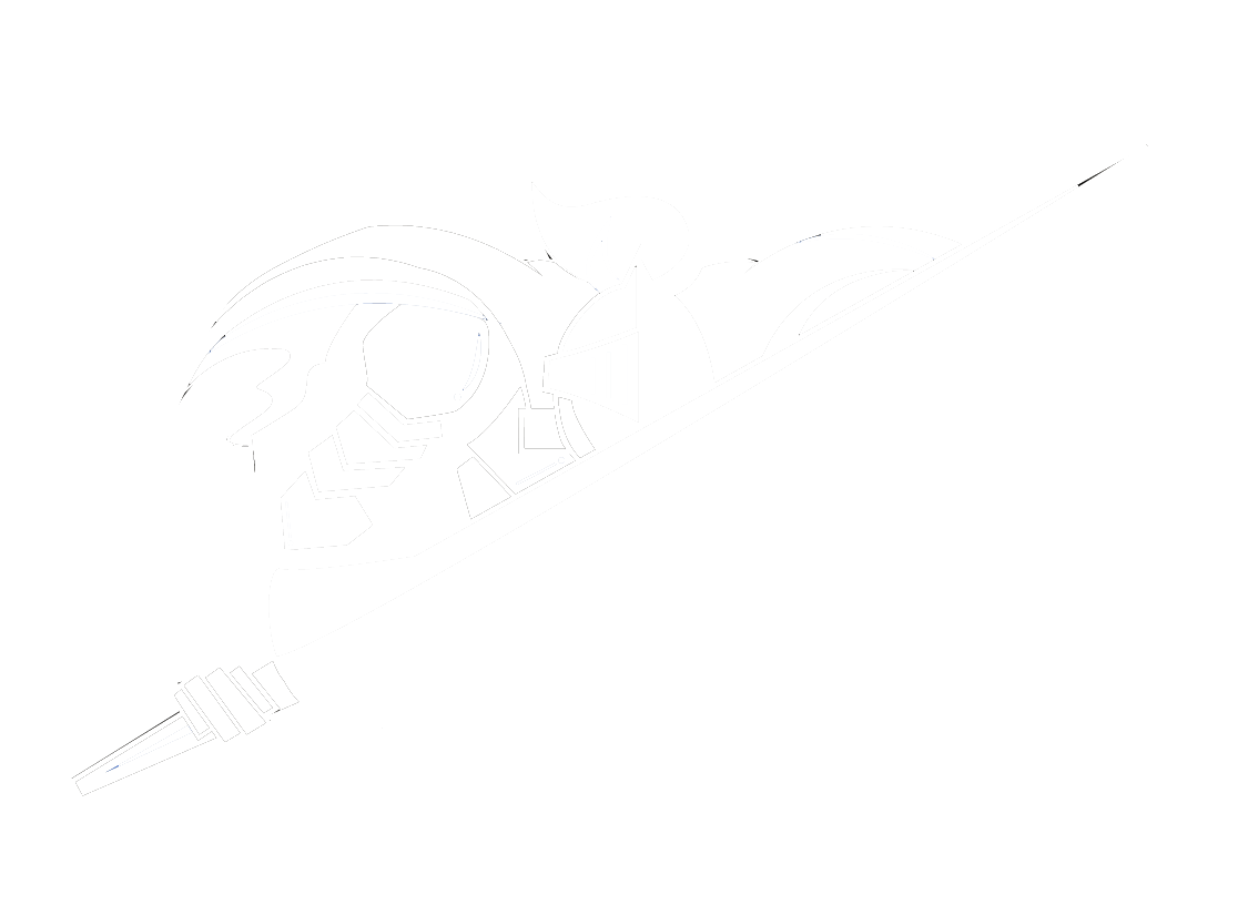 Dark Knight Security