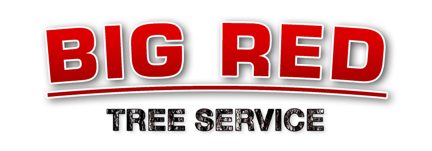 BIG RED TREE SERVICE