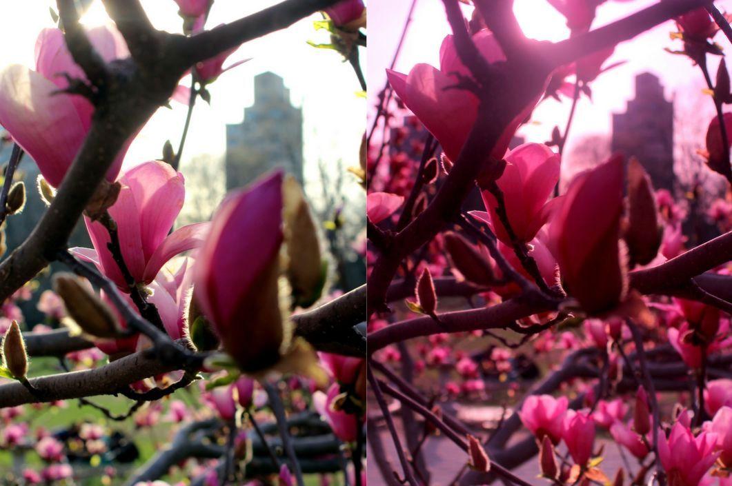 Screen Shot 2014-04-28 at 12.04.38 AM