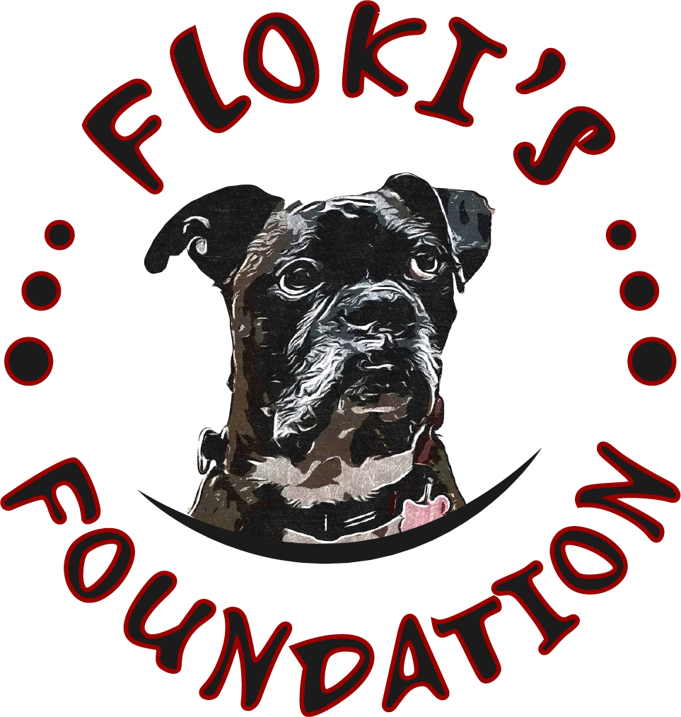 Floki's Foundation