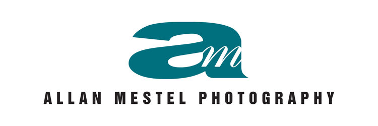 Allan Mestel Photography: Portrait Photographers in Sarasota