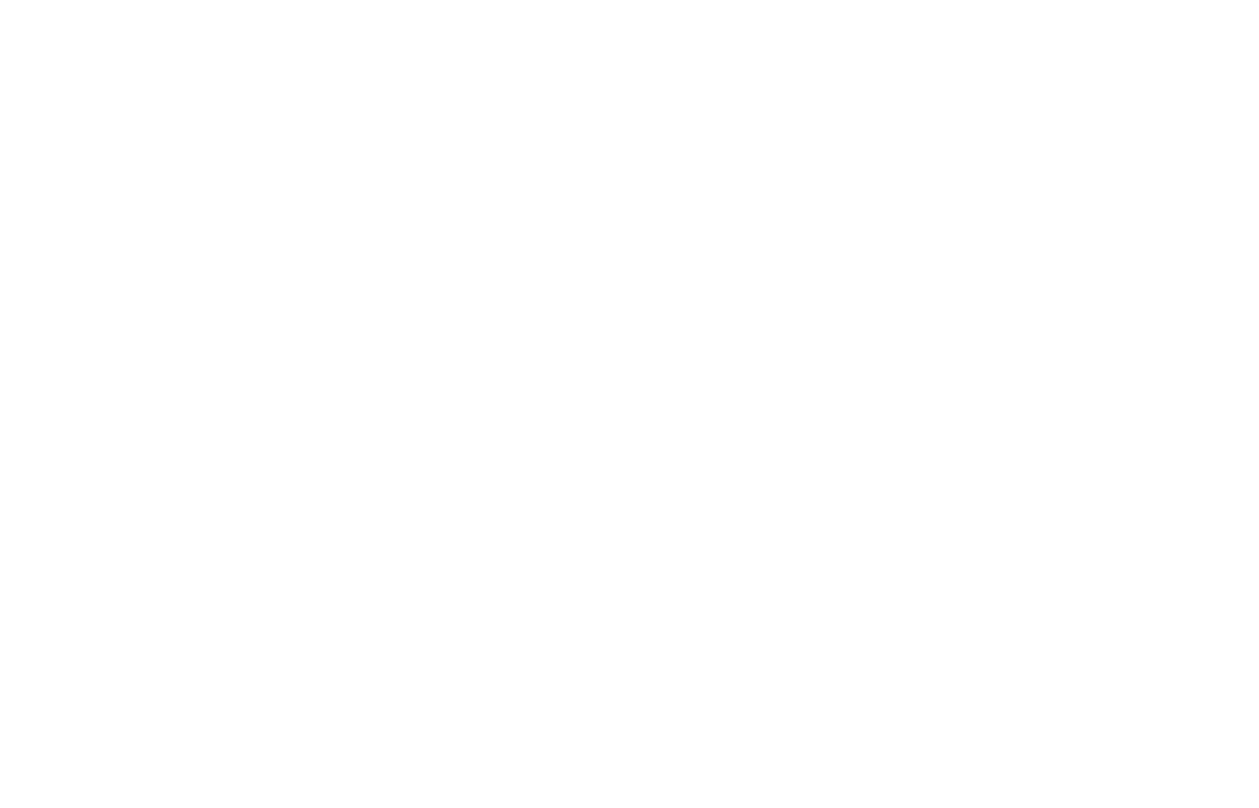 Lindsay Fort Photography