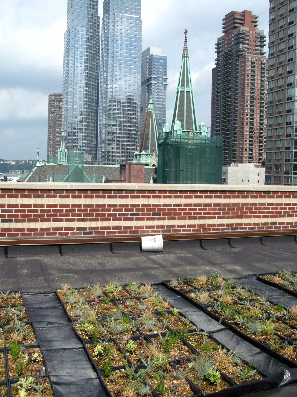 Seeding the City, modules in midtown