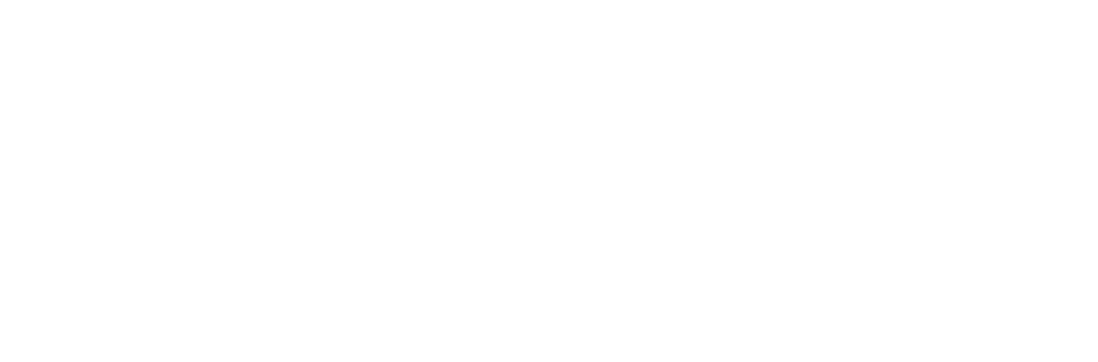 Litify.org