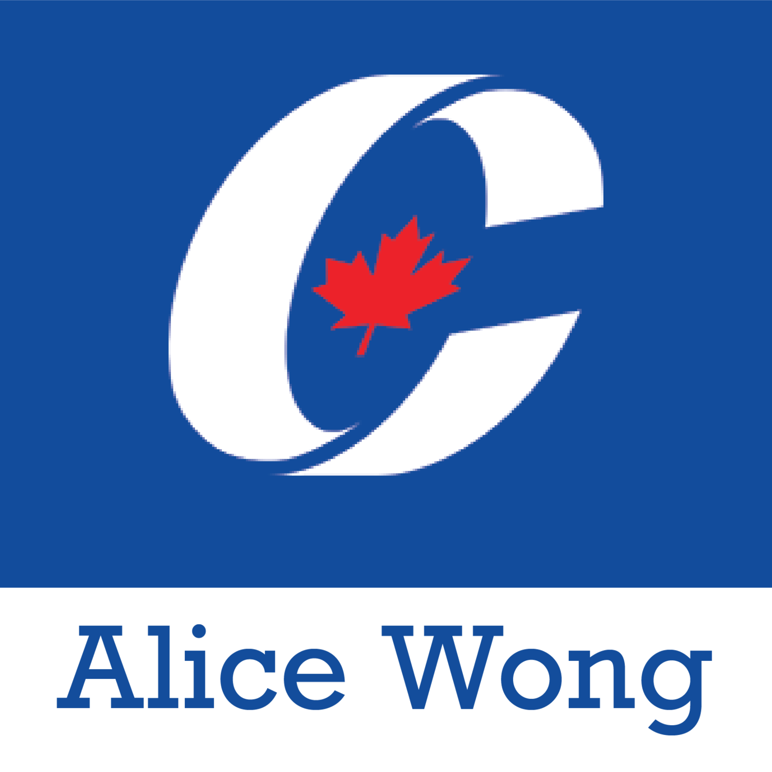Re-Elect Alice Wong