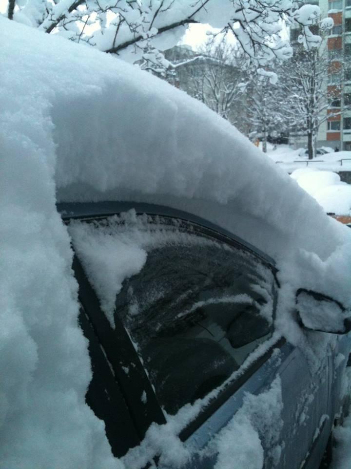 Talvisin Rainer odottelee kiltisti vaikka lumen alla, kunnes tulee töihinlähtöaika.