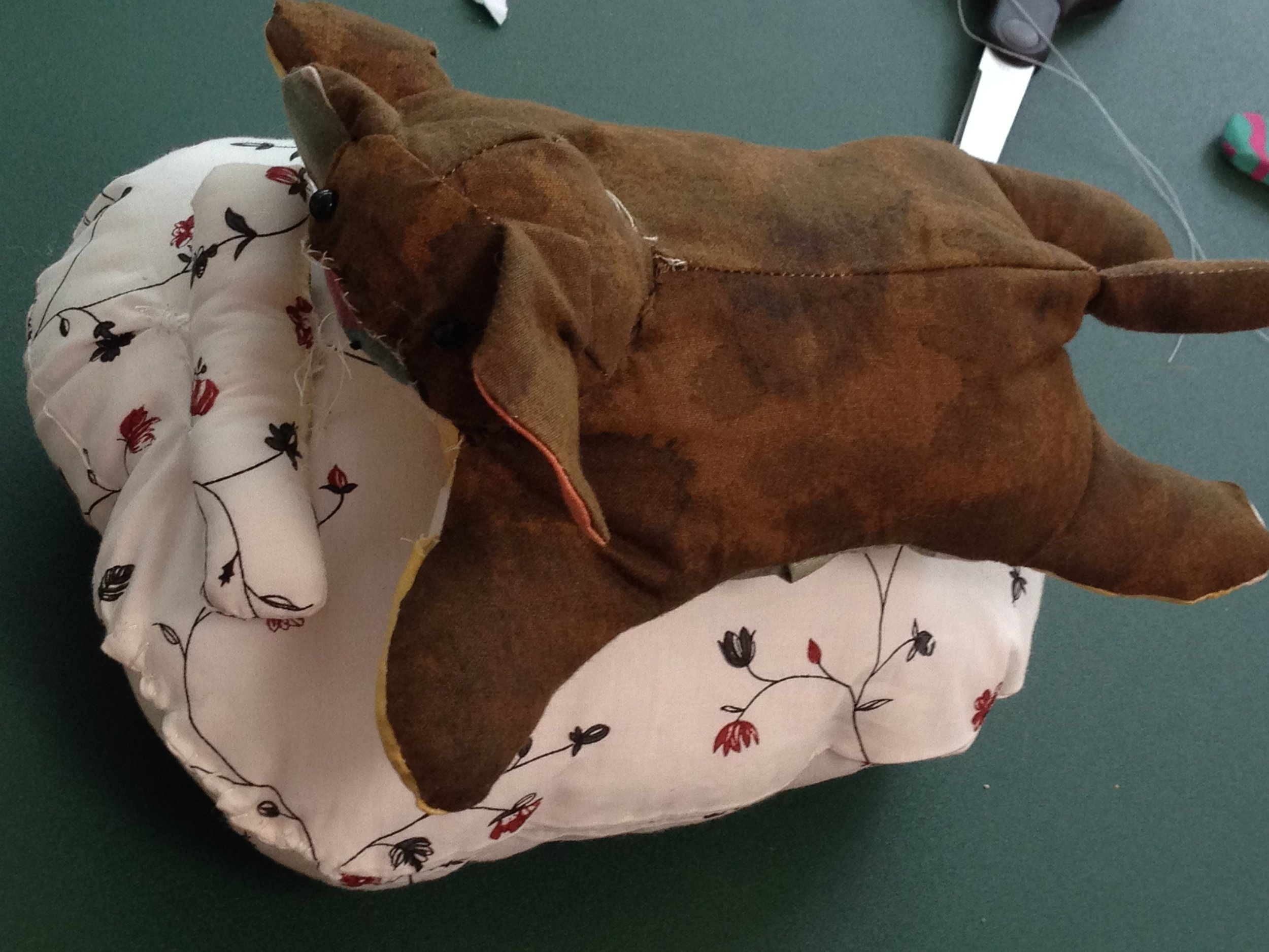 4th grader puppy bed with a pillow.