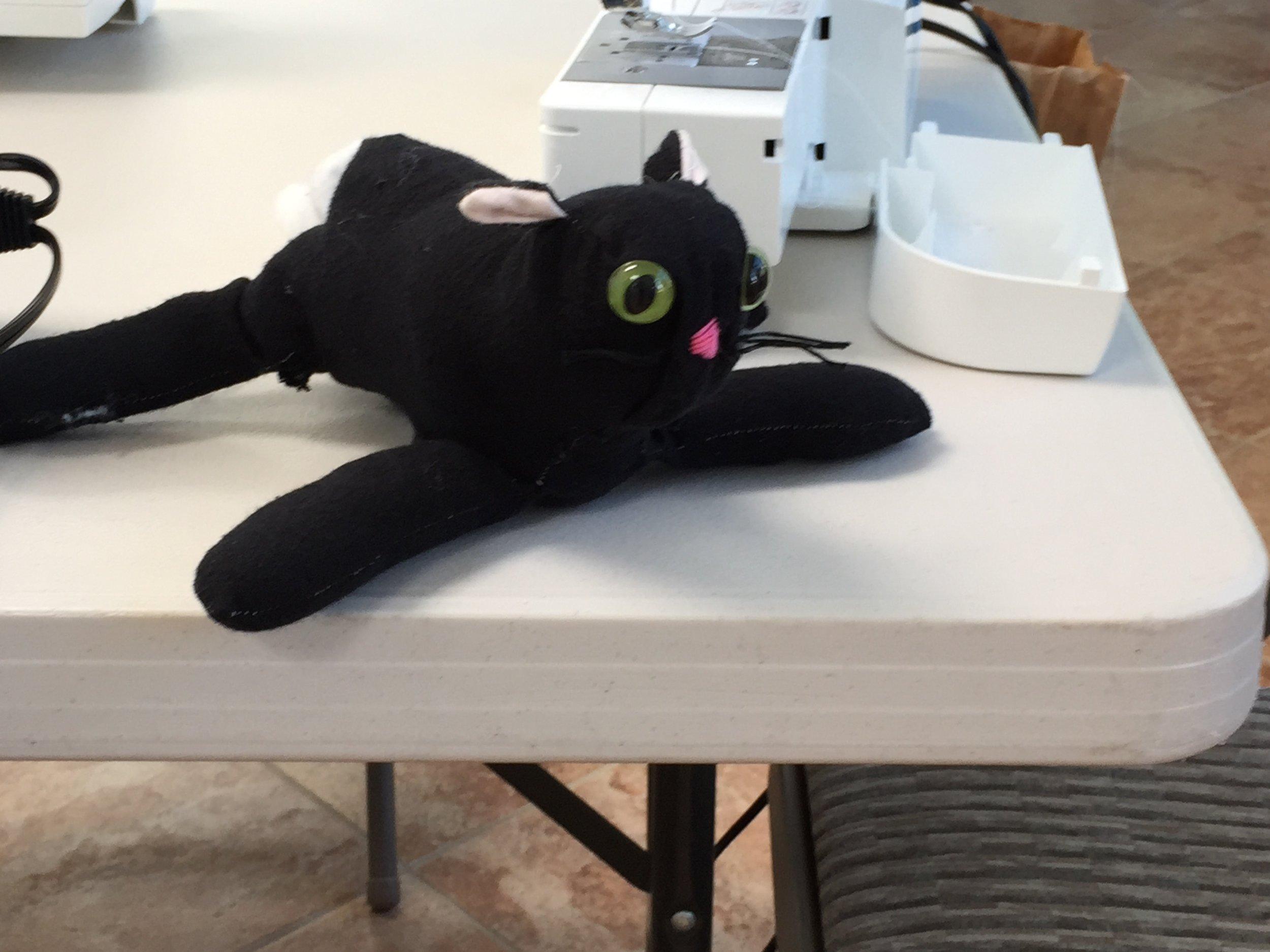 Side view of kitten.