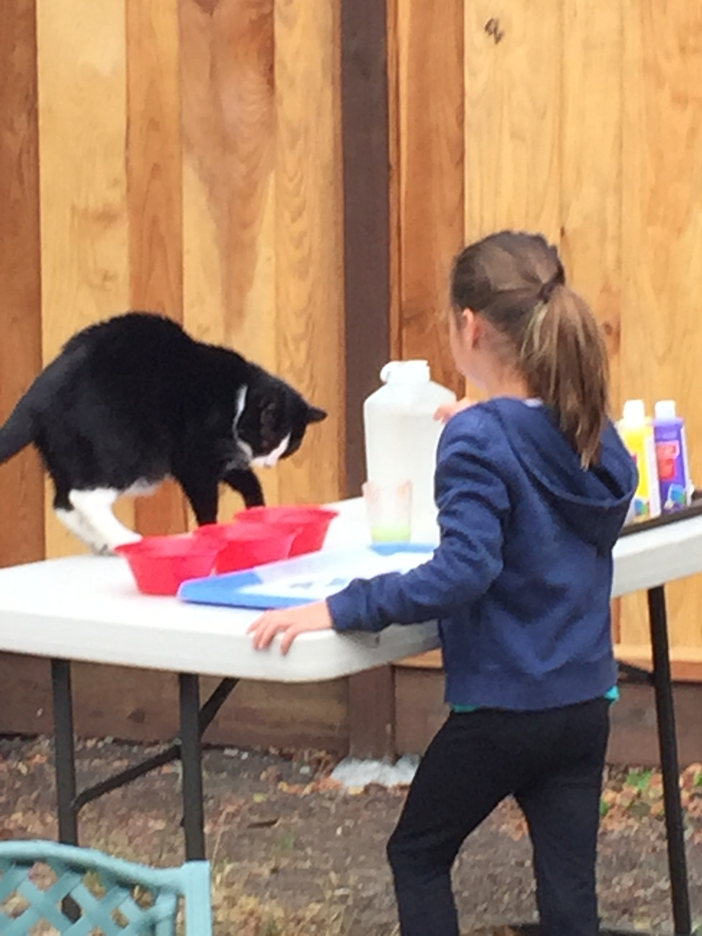 Tux helping this camper to paint her glue batik.
