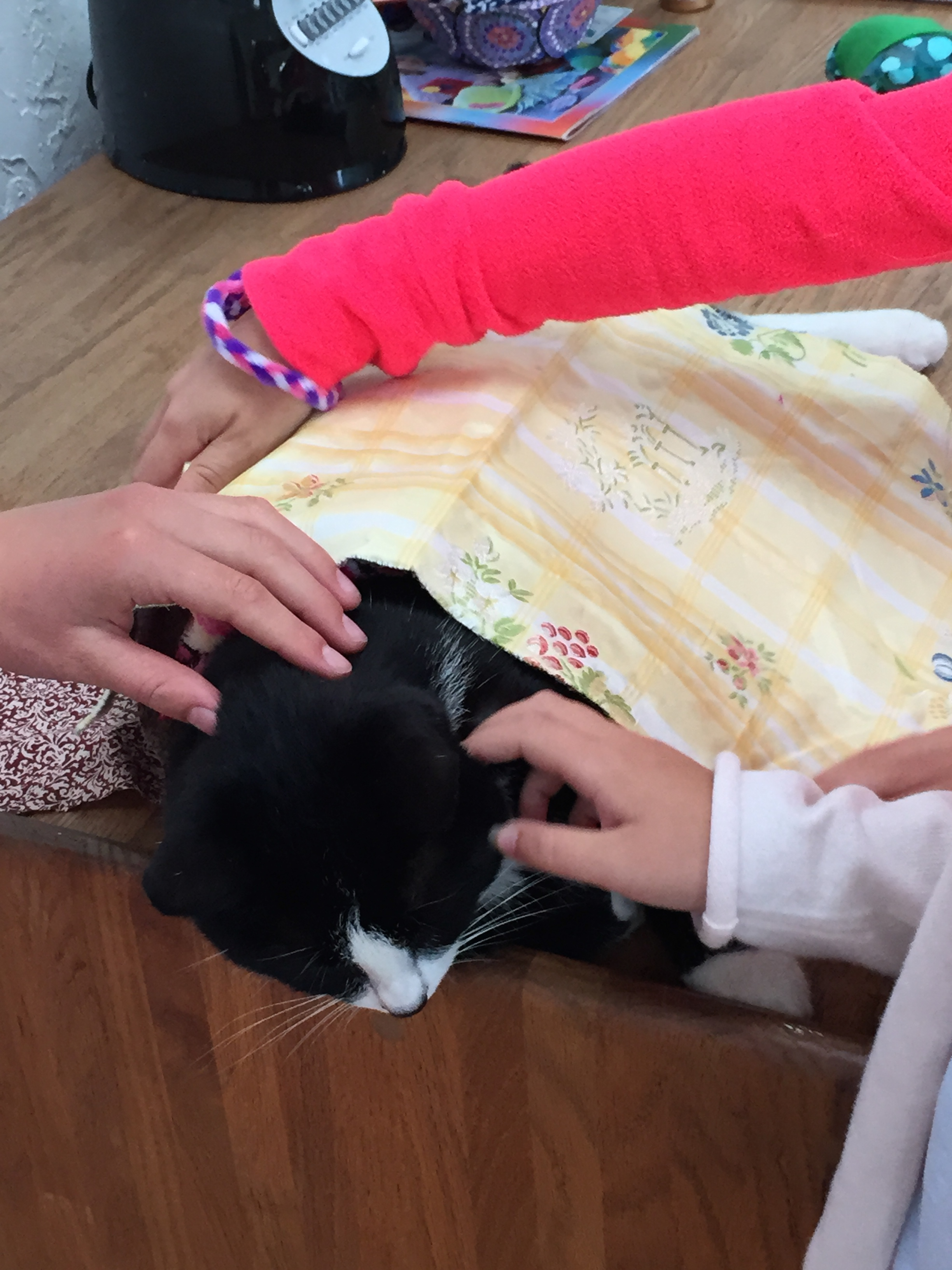Tux the distractor being taken care of.
