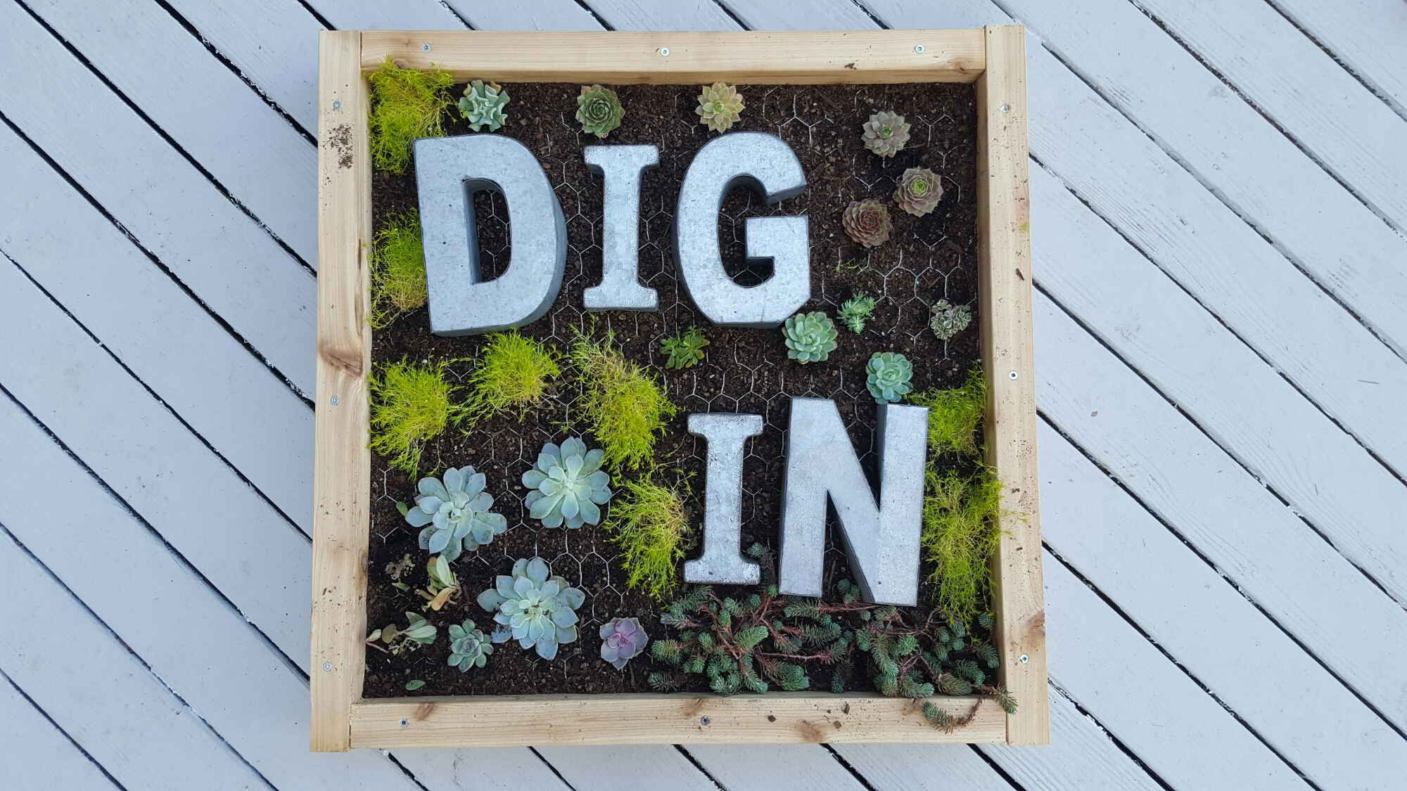 Build mastery in small ways like building a succulent planter.