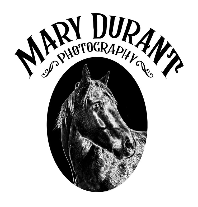 Mary Durant Photography
