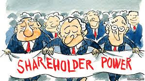shareholder power