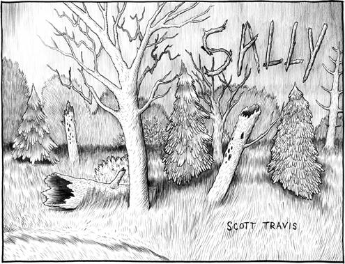Sally by Scott Travis
