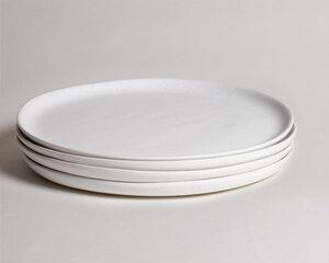 Fable Aesop Dinner Plates