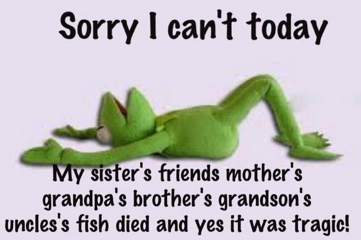 Sorry-I-cant-today...