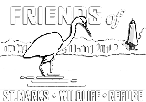 Friends of St. Marks Wildlife Refuge