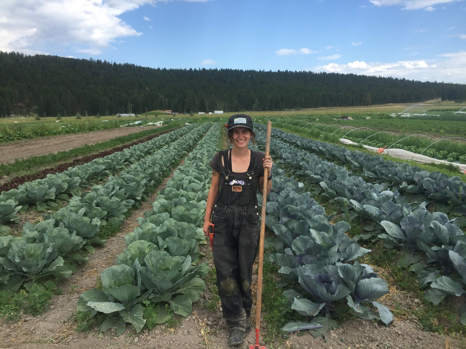 3 Steps To Your First Paid Farm Job With Zero Experience Ramblin Farmers