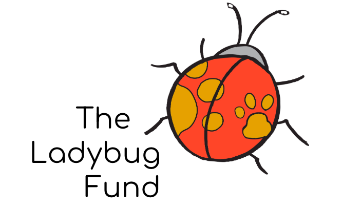 The Ladybug Fund