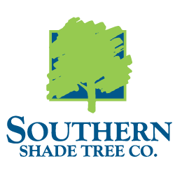 Our Team Southern Shade Tree