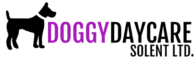Doggy Daycare Solent - Dog Care Services in Fareham