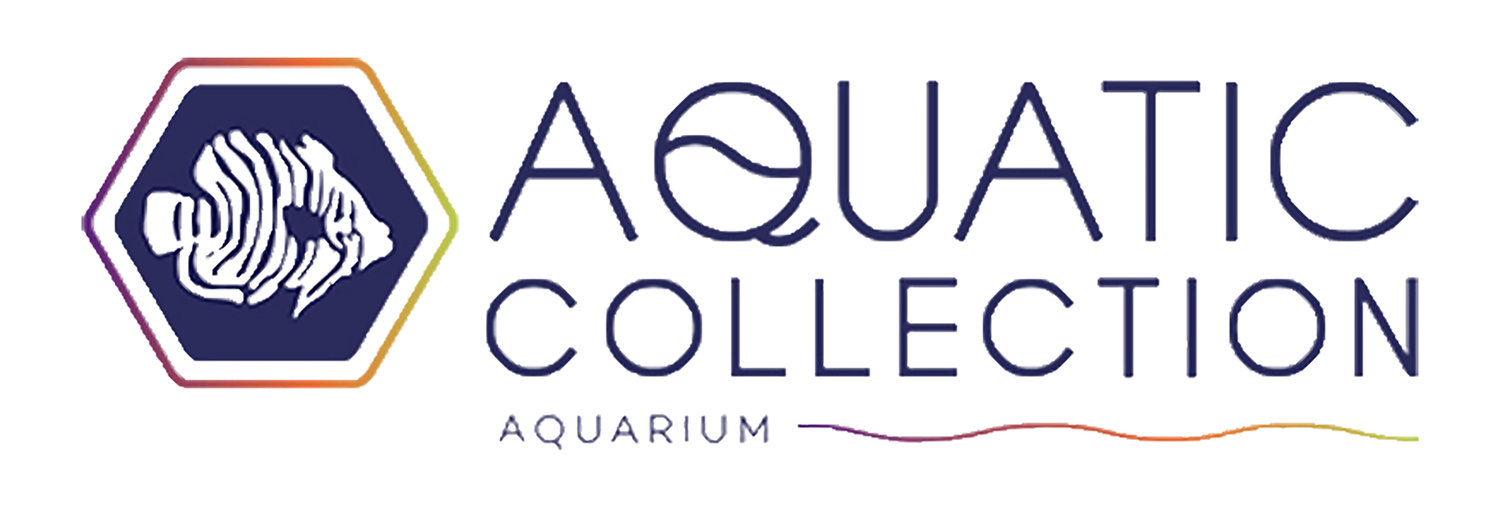Aquatic Collection