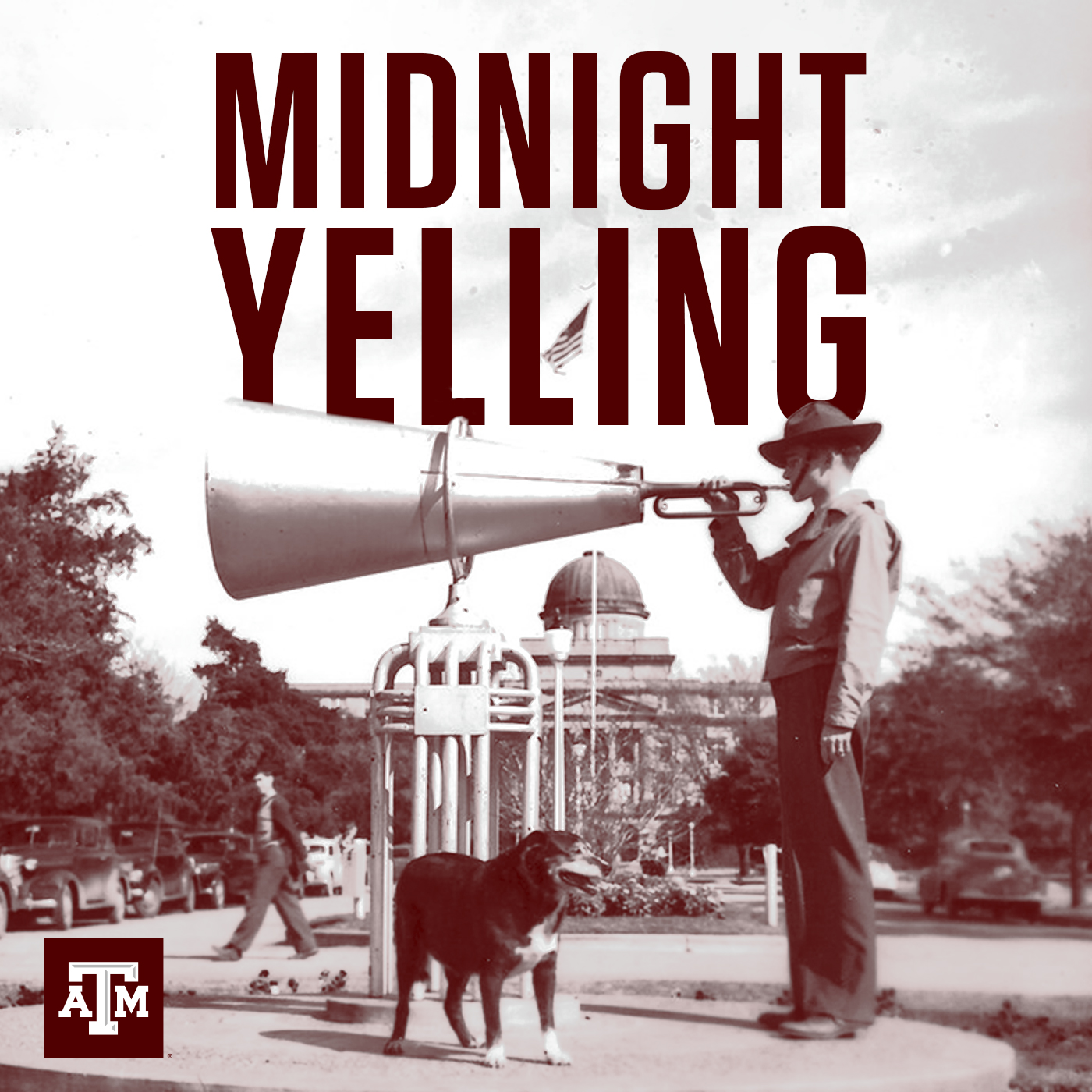Midnight Yelling
