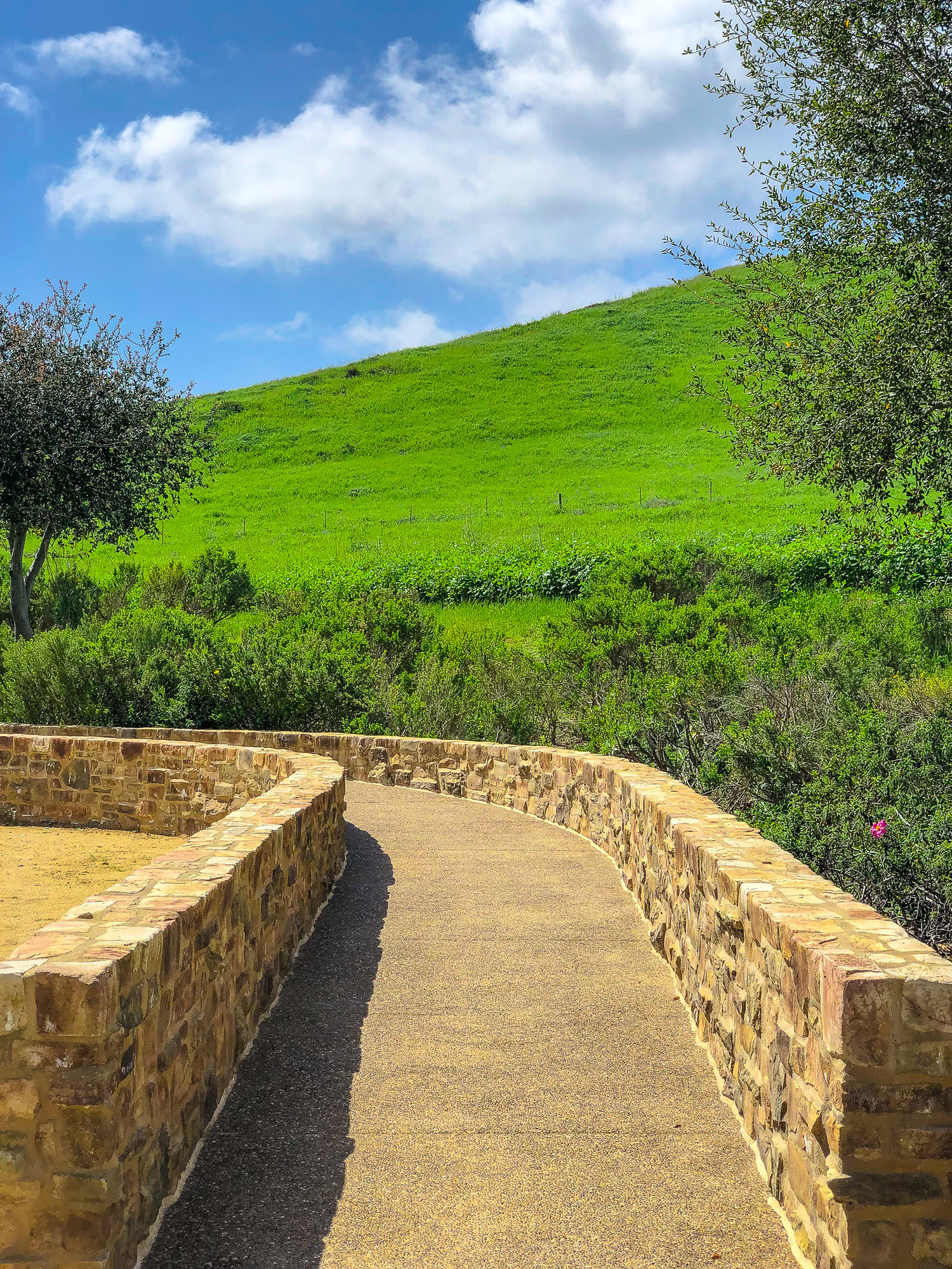 Top Hiking Trails and Parks Natalie Boyle.jpg