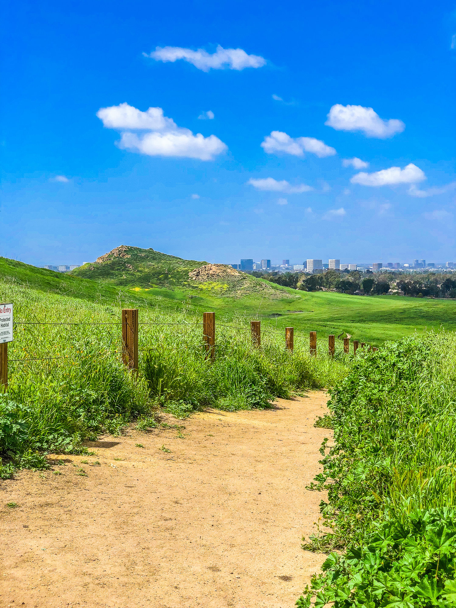 Top Irvine Hiking Trails and Parks
