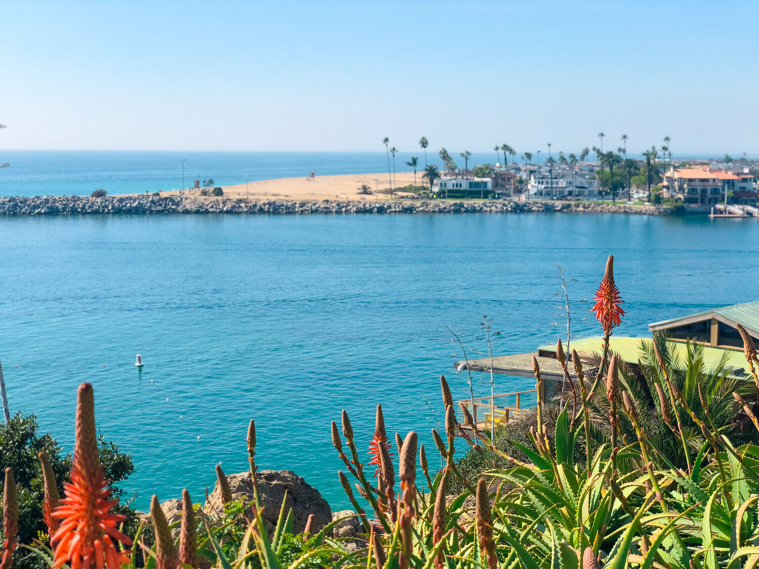 Best Hiking and Beaches Corona Del Mar Natalie Boyle