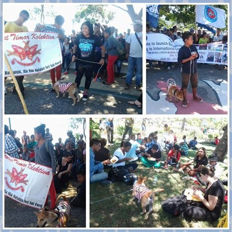 """photos of people carrying banners saying """"Scarlet Timor Collective - together our nation will be strong"""""""