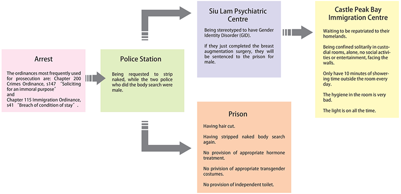 Diagram from the Midnight Blue report showing the process of arrest, detention and deportation.