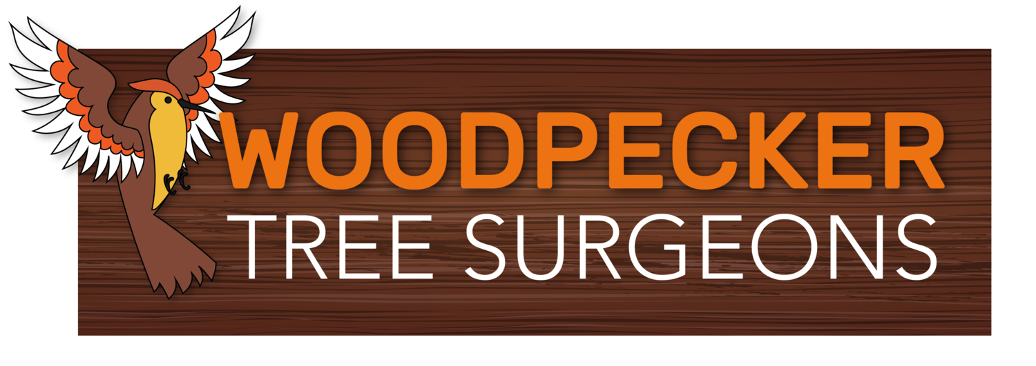 Woodpecker Tree Surgeons