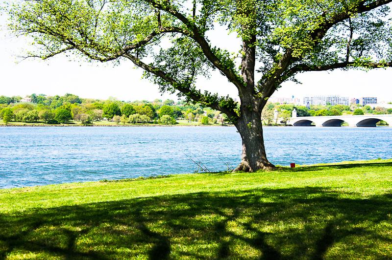 Potomac Fishing