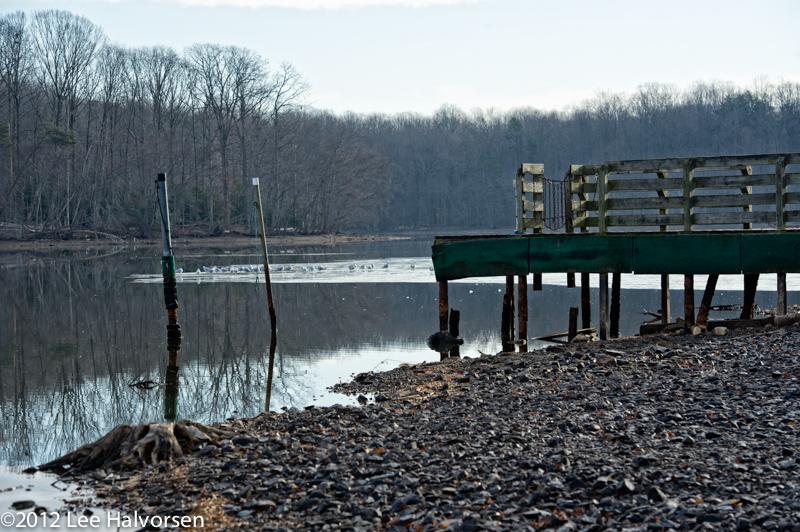 Burke Lake Dock, Water Is Rising!